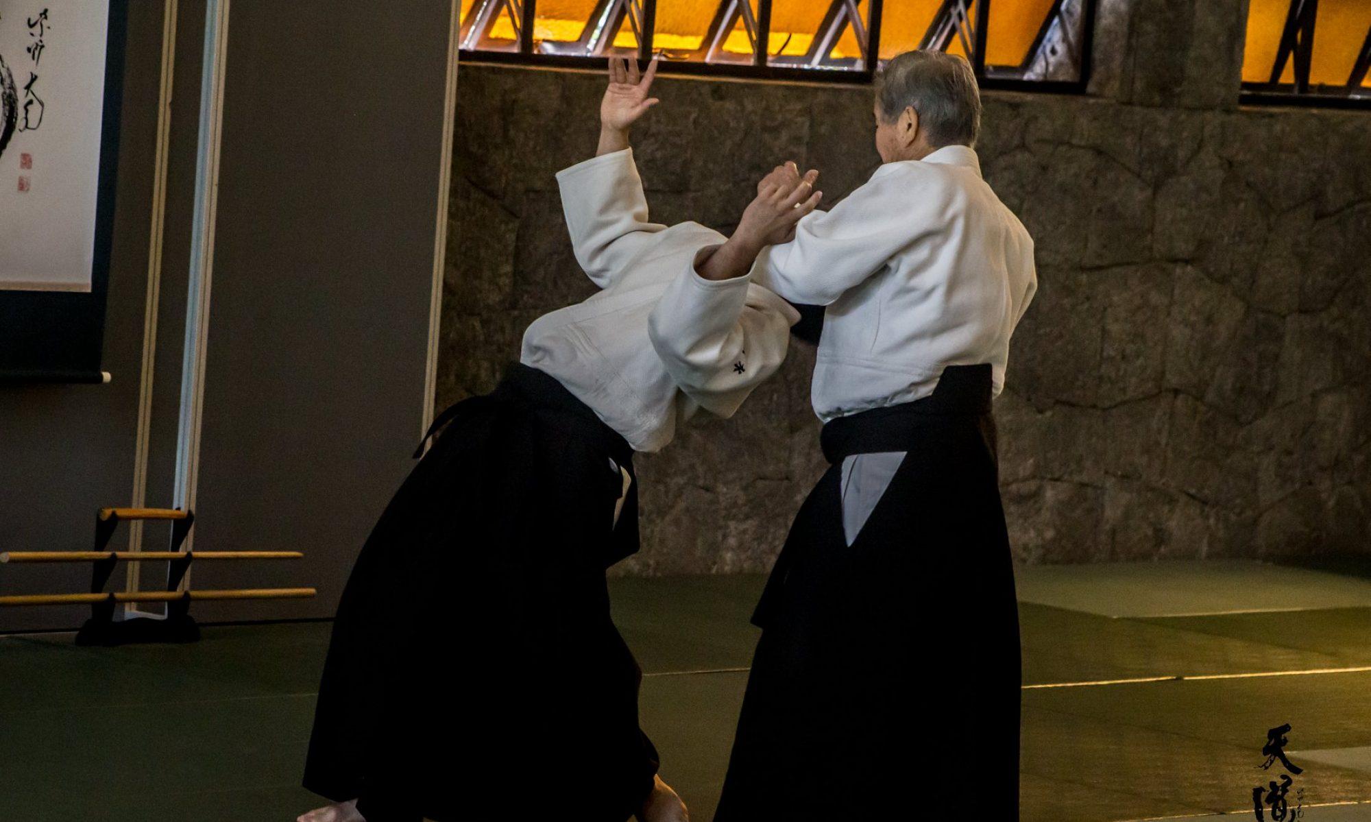 Tendoryu Aikido Mexico